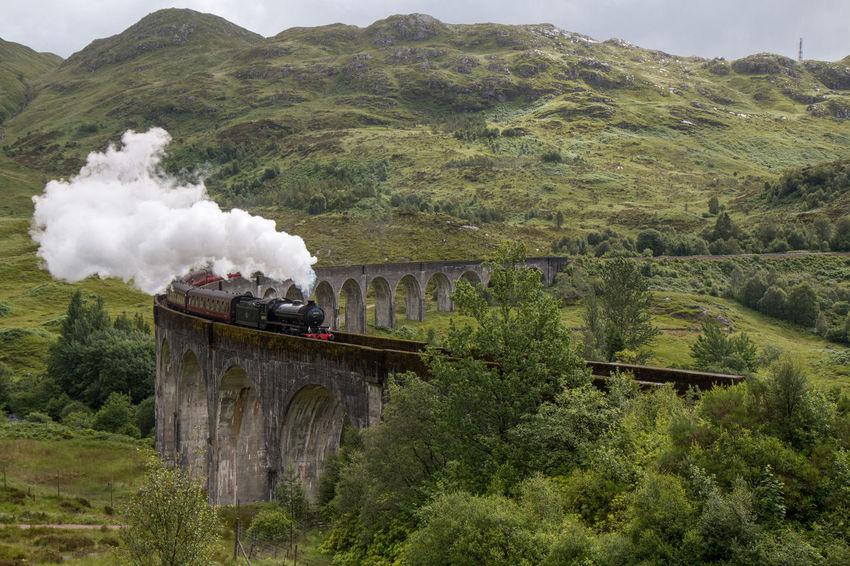 Harry Potter Nature Scotland Bridge Glennfinnan Highlands Movıe Old Train Train