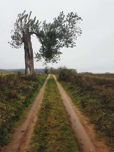 Dirt road along trees on field against sky