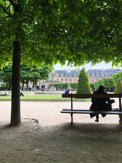 Place des Vosges Park Nature Photography Naturelovers Nature_collection Nature Real People Place Des Vosges Travel Travel Destinations Paris Tree Plant Park Seat Bench Park - Man Made Space Nature Day Park Bench Sitting Real People Growth Incidental People Outdoors Green Color Sunlight Relaxation Shadow Empty Beauty In Nature My Best Photo The Mobile Photographer - 2019 EyeEm Awards