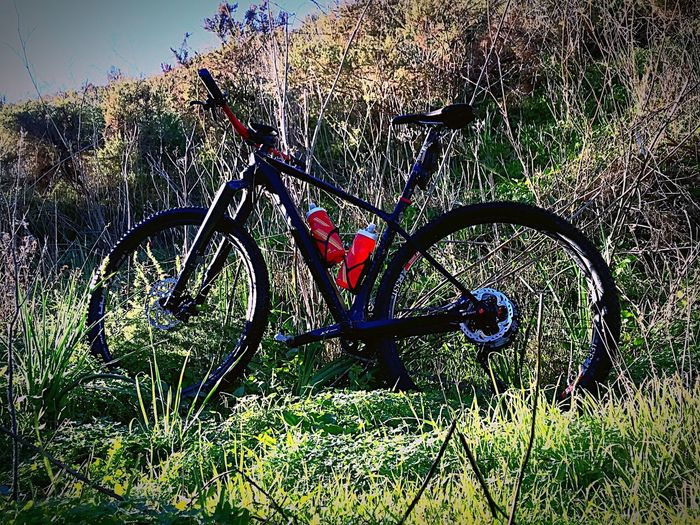 Shimano Maxxis Ghost Bike Day Plant Nature Outdoors Bicycle No People Transportation Grass Sunlight Mode Of Transportation Land Vehicle Metal Sport High Angle View Field Heart Shape Built Structure Water Shadow