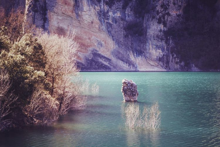 Green Color Green Water Landscape Lake Lake View Lakeside Mountain Rock Colors Texture Colorful Water Tree Outdoors Outdoor Photography Sunlight Sunny