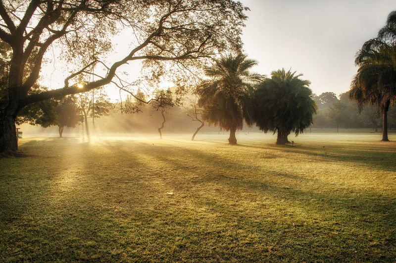 Sunrise in the