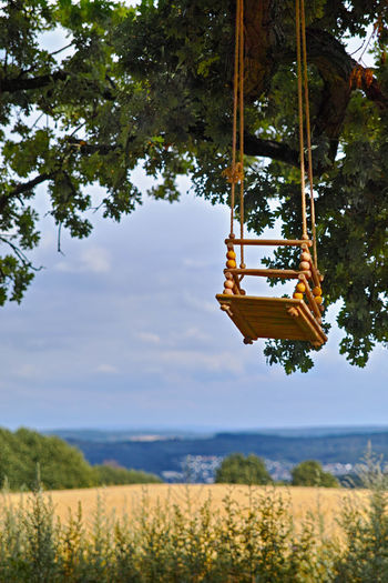 Plant Tree Nature Growth Day Hanging Outdoors No People Land Green Color Swing Beauty In Nature Landscape Sky Environment Non-urban Scene Tranquility Rope Low Angle View Rope Swing Schaukel In Alter Eiche Romantische Ruhe Pause Kinder