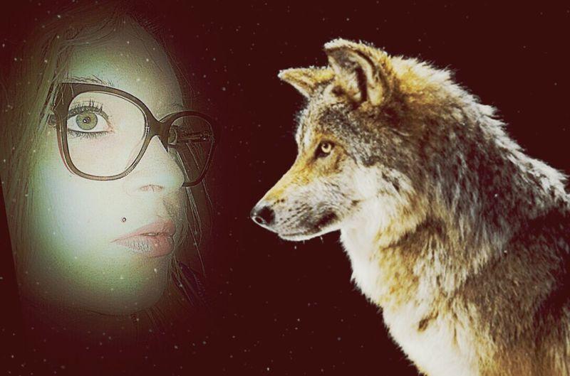 Girlfriend Greeneyes Wolf Nature Nature_collection Nature Photography Stars Sky Love ♥ Love Blond Ragusa - Scorcio Italiano Italy Best  Bestphoto