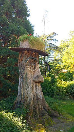 ArtWork Artobject Wooden Zooantwerpen Green Scenery Sunlight Likethis Funnyobject Funny