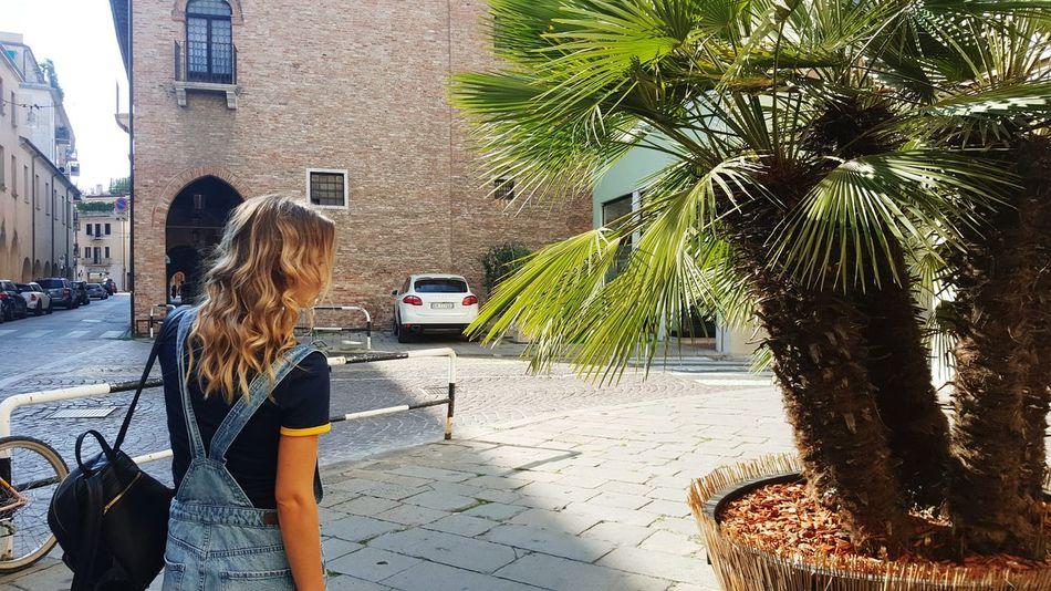 Trevizo Italy🇮🇹 Italygram Sofi🦄 Fotografia 43GoldenMoments Sammer Me Sole...☀ Treviso, Italy