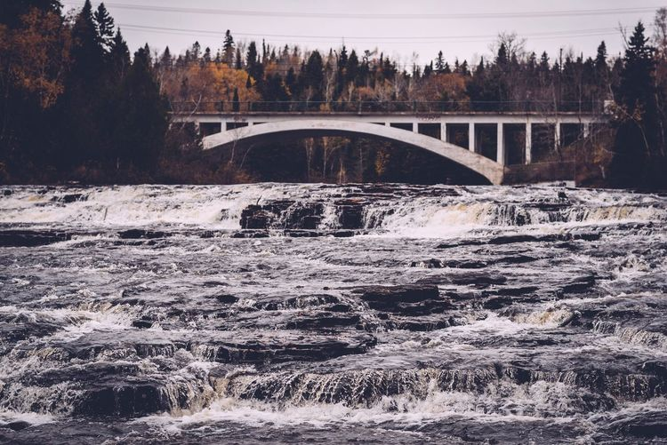Scenic view of arch bridge over river in forest