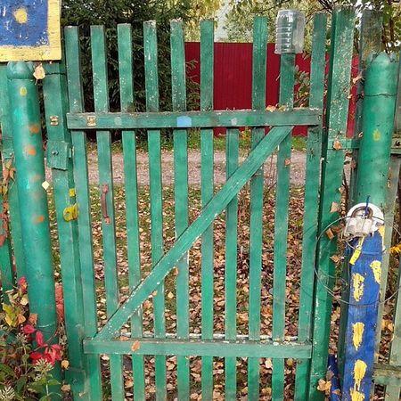 #калитка #дверь #дача #door #village