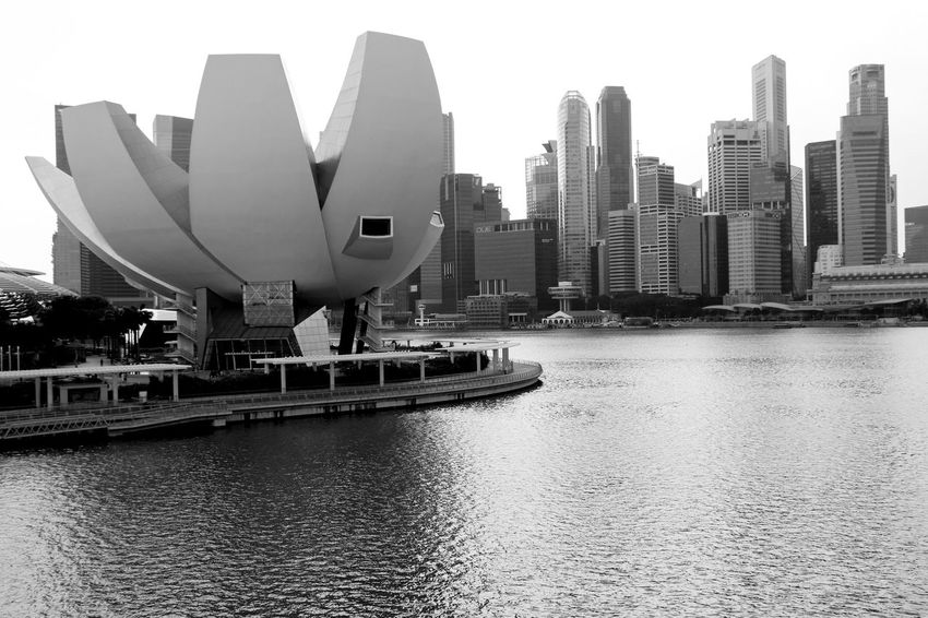 Streets Beauty Building Exterior Buildings Built Structure Bvridge Day Explreindonesia Marina Marina Bay Sands Modern Monochrome Museum Musuem Natgeo Natgeotravel Scenics Sky Sky And Clouds Skyline Tourism Tourists View From Above Visit Visitsingapore VSCO