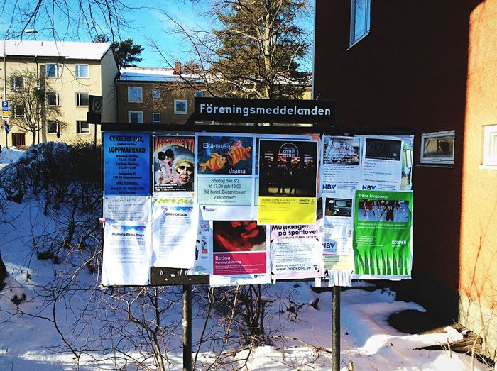 Poster Check This Out Walking Around Winter Bagarmossen