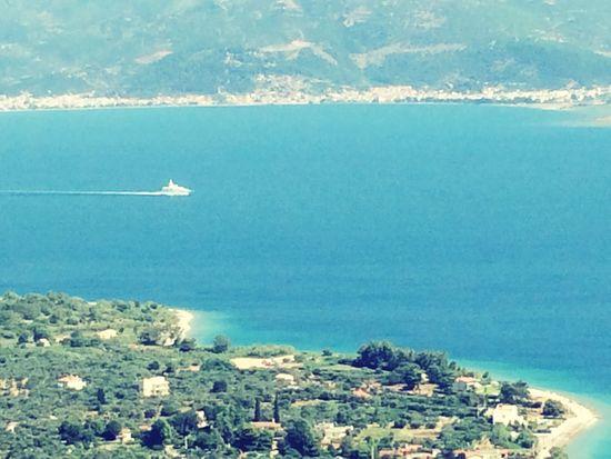 Sheikh view