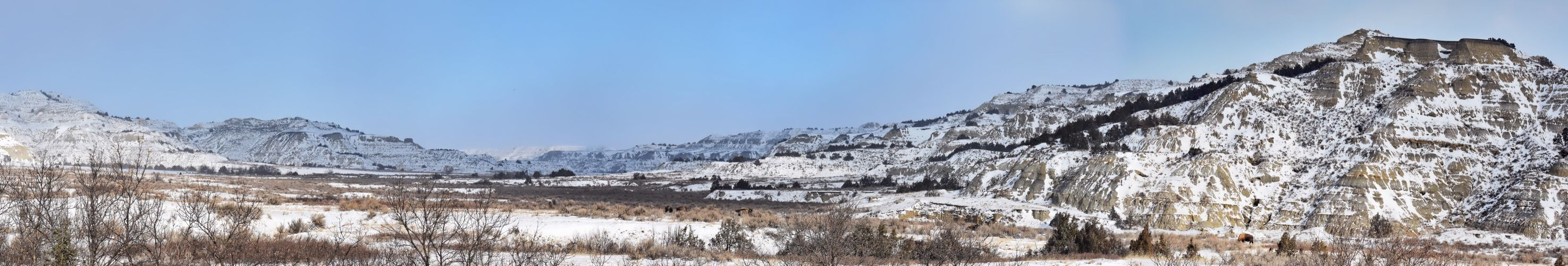 Pano of mountains in Theodore Roosevelts National Park EyeEmNewHere Panorama Snowing Layers Theodore Roosevelt National Park North Dakota Trees Winter Snow Sky Cold Temperature Nature Day Mountain Frozen Outdoors Scenics - Nature No People Snowcapped Mountain Environment