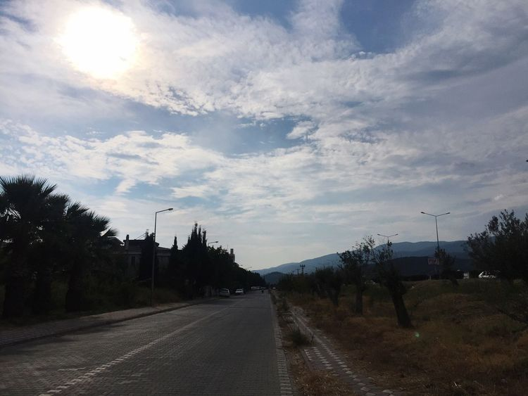 Bicycle road to sunset Kaz Mountains Sunlight Riding Bike Road Tree Plant The Way Forward Outdoors No People