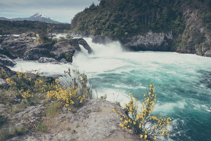 work work work work work - so much I couldn't even post any photos lately...urgh. Well, here's one from my last trip to Chile. Beauty In Nature Day Fresh Water Landscapes Nature No People Outdoors Saltos Del Petrohue Scenics Tourism Travel Destinations Travel Photography Volcanic Landscape Water Waterfall Wildflowers The Great Outdoors - 2017 EyeEm Awards