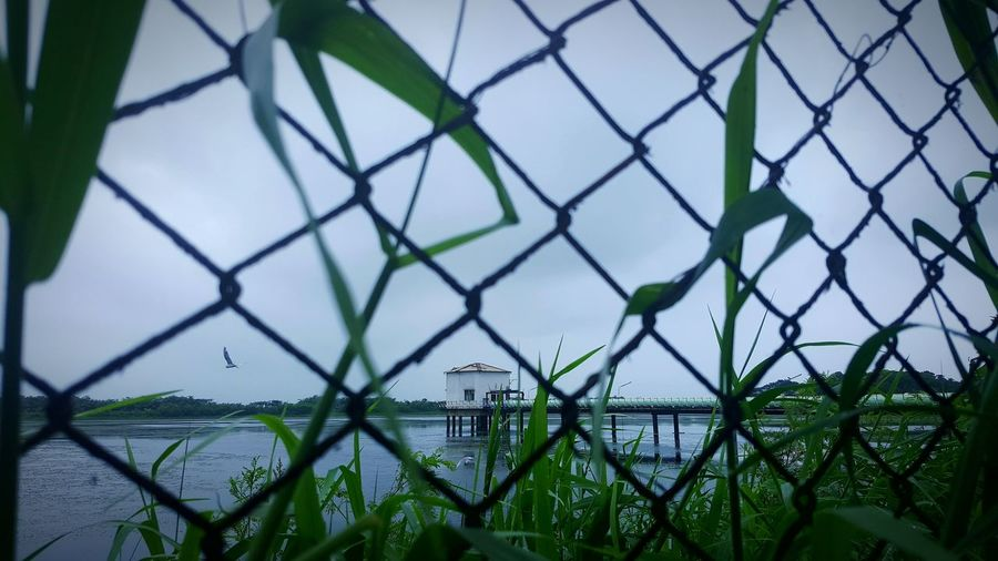 A new day gave me a new angle.. Morning Walk Lake Shades Of Monsoon Gloomy Skies Lake View Nature S6edge Edgephotography in Ankleshwar Gujarat India