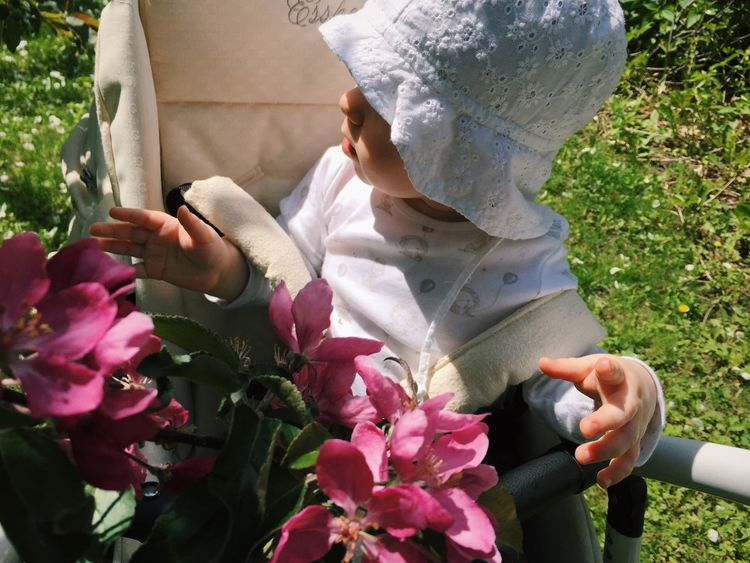 Children Children Photography Hat Summertime Blooming Apple Tree Apple Blossom Nature Fragility Beauty In Nature Freshness One Person Real People Flower