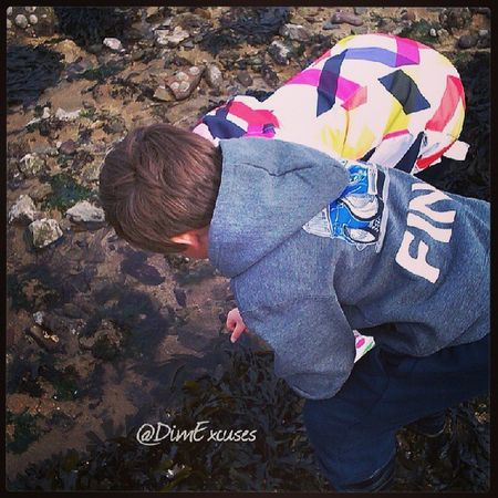 Is there anything more rock & roll than Rockpooling ?
