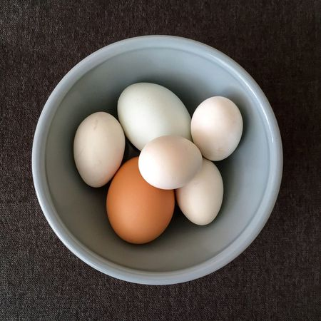 Found On The Roll Farm fresh eggs in a bowl. Food Healthy Eating Freshness Bowl Directly Above Egg Close-up Animal Egg Fragility Dairy Product Protein Group Of Objects Chicken Egg Organic Overhead View Elevated View Farm Fresh Raw