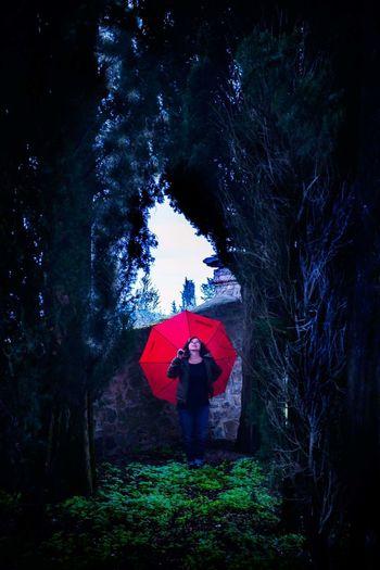 Woman Ombrello Rain Umbrella Tree Full Length Tree Spooky Red Forest Standing Fantasy Rear View Sky
