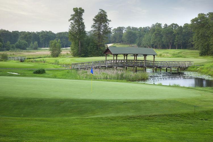 Bridge Over Golf Course