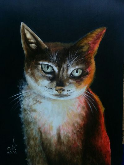 "My dearest AnTim cat,hi AnTim this is for you my dear as I promised ,enjoy your cat,16""_24""oil on canvas . Portrait Cat Lovers Cats 🐱 One Animal Domestic Cat AnTim Cat Pets Animal Eye Close-up Animal Themes My Art Collection ArtWork Fine Art Oil Painting Art, Drawing, Creativity Drawing My Animal Collection Fredom 3XSPUnity 3XSPhotographyUnity My Best Friends ❤ Cat Model Friendship. ♡   Love ♥ Koi."