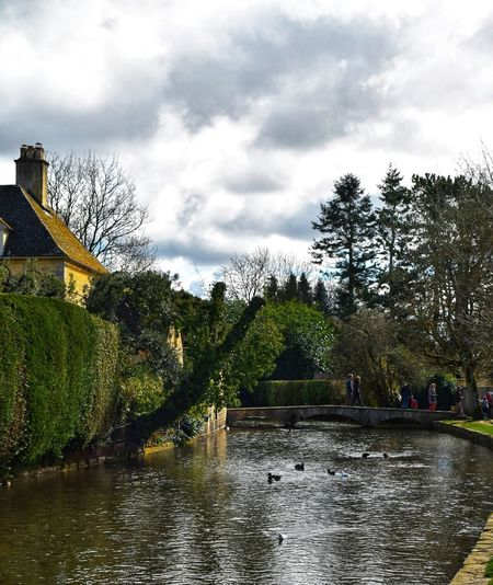 Riverside Photowalktheworld Nikonphotographer Nikonphotography Cotswolds Countryside River Nature Picturesque Village Tree Water Sky Architecture Cloud - Sky Watermill Residential Structure