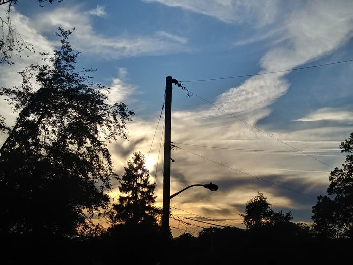 Cloud - Sky Silhouette Tree Sky Sunset Outdoors No People Low Angle View Nature Day Beauty In Nature Telephone Line Bird