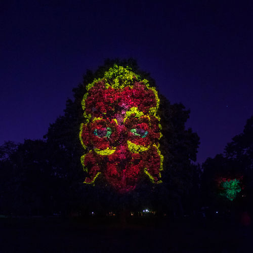 Giant red head light painted on a tree in Kolomenskoye park during the 2018 Moscow Light Festival Kolomenskoye Light Festival Light Painting Moscow Red Blue Blue Sky Creativity Face Illuminated Multi Colored Night Night Sky No People Pink Color Plant Purple Tree