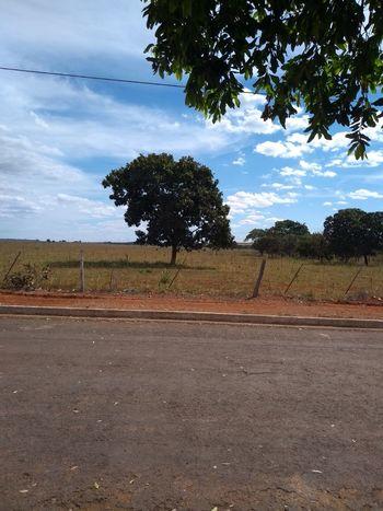Tree Oil Pump Agriculture Sky Landscape Cloud - Sky
