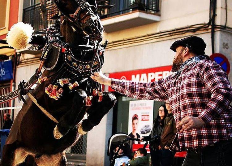 Trestombs Molinsderei Traditional Catalunyaexperience Catalunya Trestombs Tracionscatalanes Barcelona Descobreixcatalunya Europe Santantoni Horses Horsesinstagram Rural