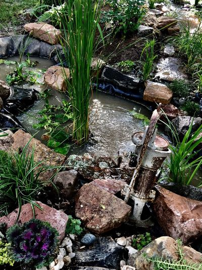 Water Rock - Object Nature Plant Moss No People Outdoors Beauty In Nature High Angle View Waterfall Day Tranquility River Flowerbed Garden Photography Front Or Back Yard Pond