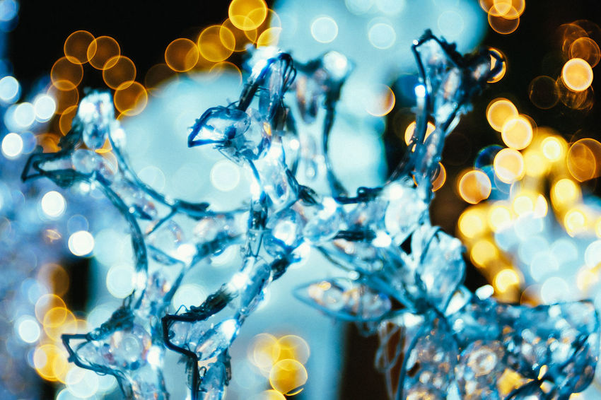 plastic ice and lights. Cold Temperature No People Abstract Backgrounds Bokeh Analog Lenses Trioplan100 Lights Bokeh Photography Still Life Christmas Close-up