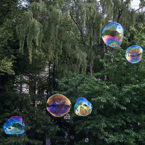 Beauty In Nature Bubble Bubble Wand Day Fragility Growth Mid-air Multi Colored Nature No People Outdoors Rainbow Refraction Soap Sud Spectrum Tree
