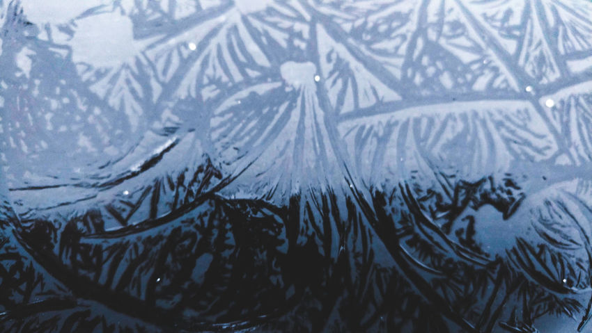 Frost Cold Cold Winter ❄⛄ Latvia Riga Winter_collection Winter Snow Cold Temperature Weather Snowflake Window Ice Snowing Frozen Nature Pattern No People Frosted Glass Water