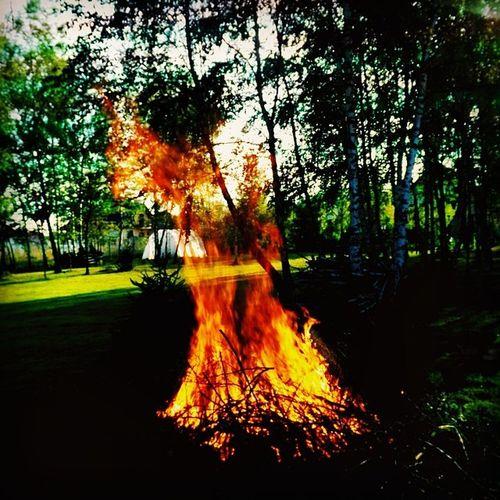 Fire Firebro Bigfire Brofire