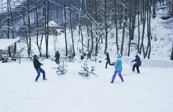 Winter Winter Fun Snow ❄ Snowballs Having Fun ⛄ Fun Friends ❤ Mountains Forest