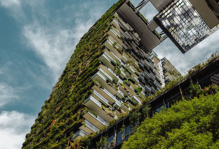 Cloud - Sky Building Exterior Architecture Built Structure Plant Sky Tree Building Day Nature Outdoors Residential District No People City House Green Color Growth In A Row High Angle View Roof Hedge Apartment Sydney Sustainability Ecology
