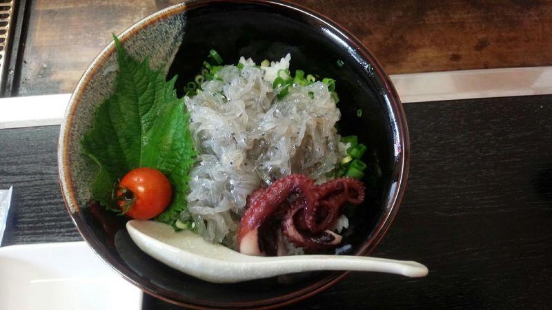 新ちゃん 生しらす丼 800円 Taking Photos Travelling Streetphotography Lunch Lunchtime
