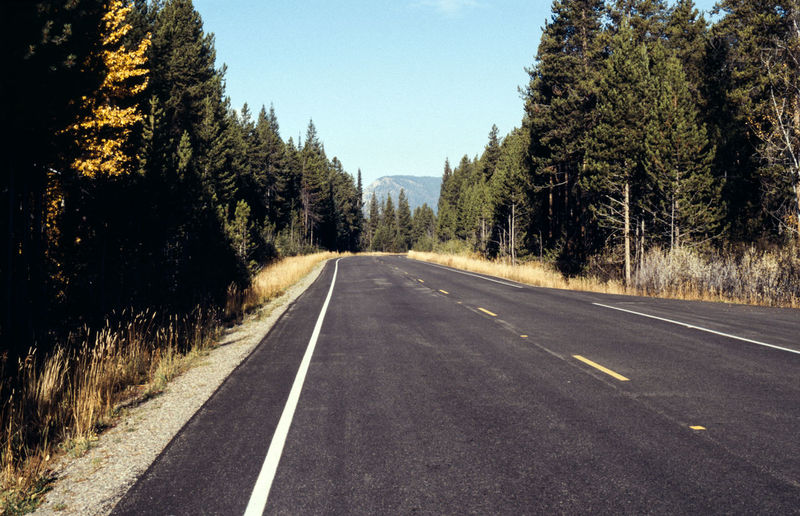 Analog Asphalt Beauty In Nature Canon A1 Clear Sky Day Grand Teton National Park  Landscape Mountain Nature No People Old But Gold Outdoors Road Scenics Sky The Way Forward Transportation Tree USA USAtrip