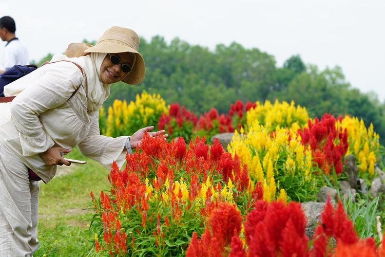 Red and yellow EyeEm Selects Plant Growth Flower Flowering Plant Beauty In Nature Nature Standing Side View Clothing Field Focus On Foreground Lifestyles One Person Adult Land Freshness Real People Outdoors Hat Men