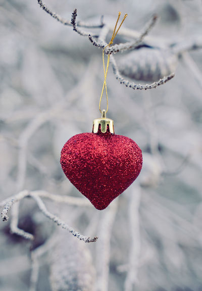 Christmas ball in heart shape on the branch Valentine's day and Christmas concept Glitter Red Valentine's Day  Winter Beauty In Nature Branch Christmas Ball Christmas Decoration Cold Temperature Decoration Heart Shape Love Minimalism Red Snow Winter