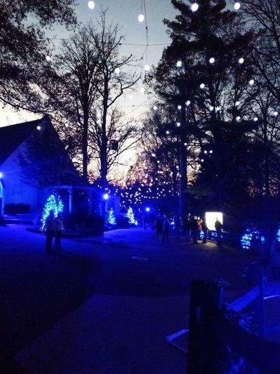 Christmas Town Christmas Town Blue Christmas Lights Christmastime EyeEmNewHere