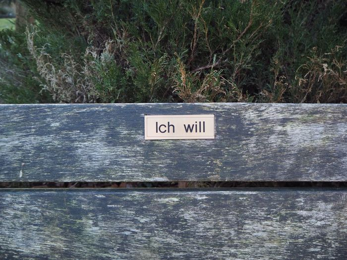 EyeEm Best Shots Ich Will Auch Ich Will Auch Text Communication Day Outdoors No People Nature Growth Close-up
