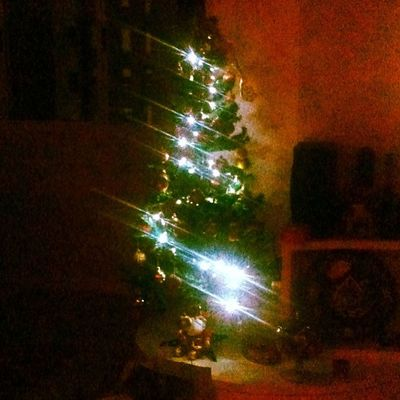 Há um ano celebramos o Natal na surpreendente cidade católica de Hoi An, em pleno Vietnam. Desta vez estamos em casa, junto ao amor da família e saudosos de tudo o que vivemos. Não parece que faz tanto tempo... 30trips Travel Travelers Rtw roundtheworld natal xmass família