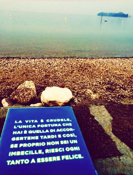 Goodbook FogyDay Relax Horizon Over Water Lake View