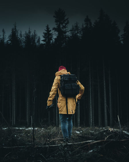 Rear view of person standing in forest