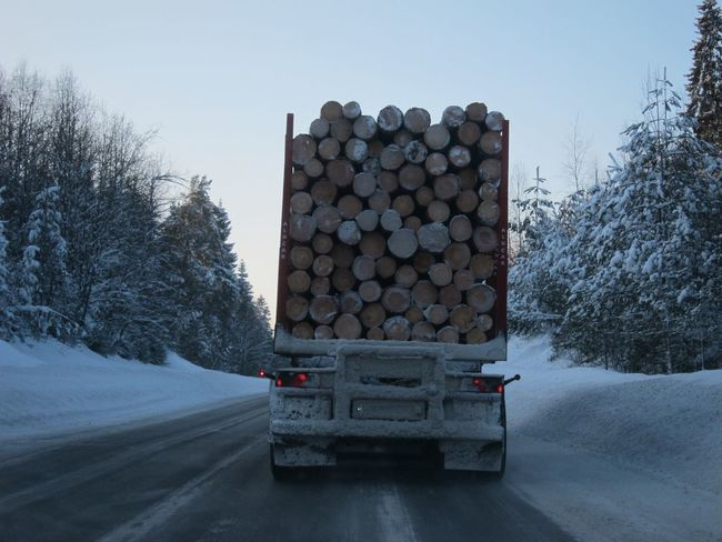 EyeEm Selects Stack Log Winter Large Group Of Objects Timber Lumber Industry Snow No People Tree Clear Sky Heap Day Woodpile Nature Outdoors Forestry Industry Sky