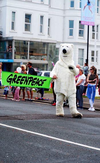 Raise awareness for Polar bears Polar Bear White Bear Costume Bear Costume Greenpeace Green Color Carnival Parade Parading Carnival Parade