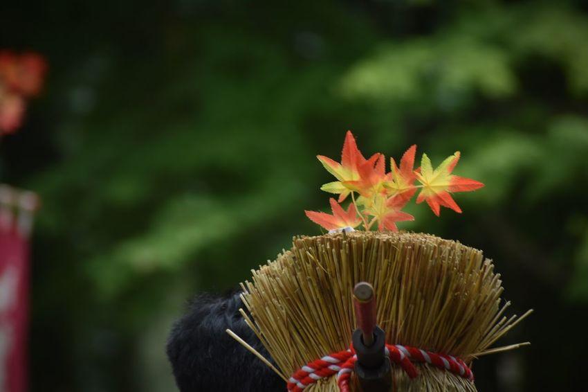 足助まつり 足助 火縄銃 Matchlock Gun 藁の束 飾り 香嵐渓の紅葉も楽しみです♪