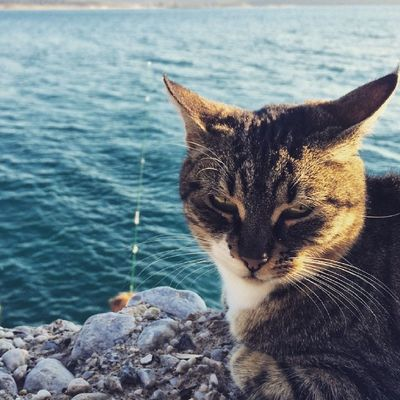 Balık beklerken :)